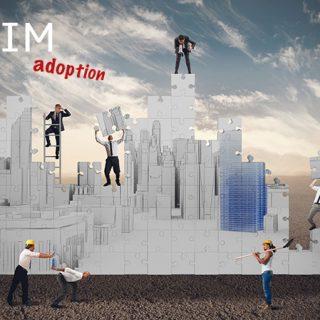 BIM adoption